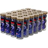 Pro Penn High Definition 24 Cans: Penn Racquetball Balls