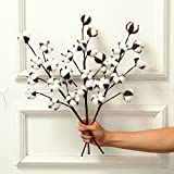 3 Pack 21 Inch Cotton Stems Farmhouse Style Display Filler - Floral Decoration