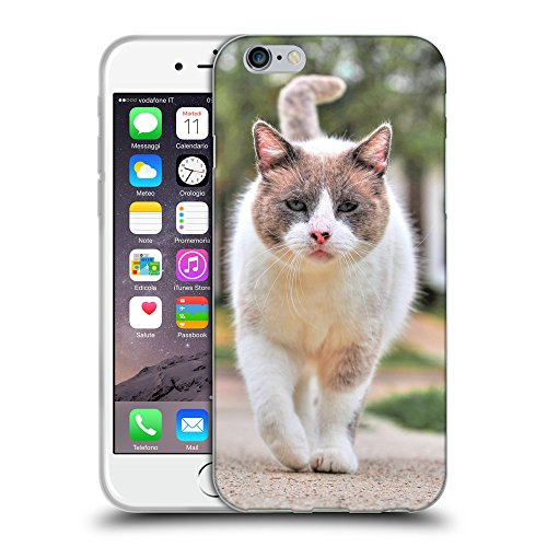 Just Phone Cases Coque de Protection TPU Silicone Case pour // V00004302 chat combattant dans la rue // Apple iPhone 6 4.7""
