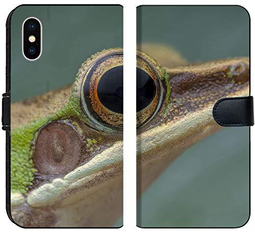 - Luxlady iPhone X Flip Fabric Wallet Case White lipped Frog Hylarana labialis at The Night Image ID 27569868