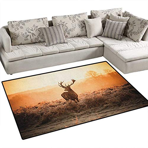 Hunting,Floor Mat,Red Deer in The Morning Sun Wilderness Nature Scenery Countryside Rural Heathers,Rugs for Bedroom,Brown Orange Size:48