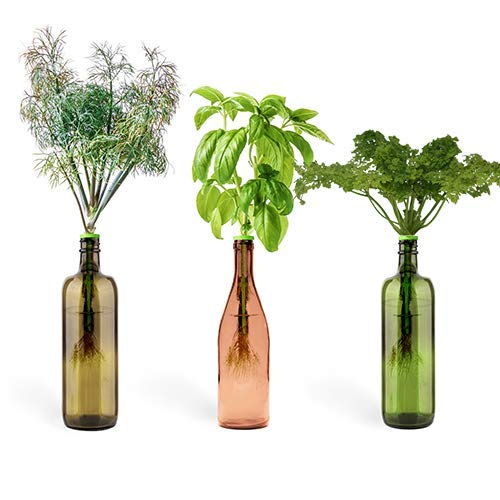 Urban Leaf - Windowsill Herb Garden Starter Kit - Self Watering Indoor Bottle Garden Kit - incl 3 Types Herb/Flower Seeds - Perfect Unique Gift for Her (or ()