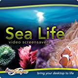 Sea Life Collection [Download]