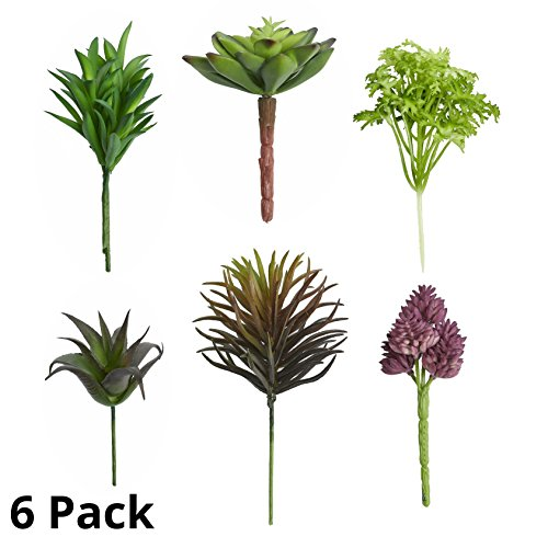 Fake Artificial Faux Plant Succulents - Pack of 6 Small Mini Decorative Flower Home Decor Assortment Pick for Indoor or Outdoor Garden, Terrarium, Aquarium, Large Pot, or Wall Planter Hanger (Spring) by Quality Home Goods
