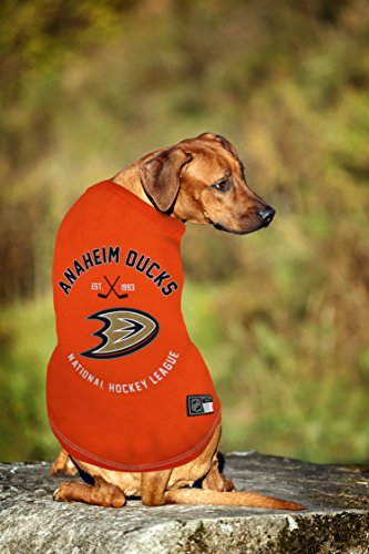 NHL-PET-Gear-for-Dogs-Cats-Biggest-Selection-of-Sports-Hockey-Pet-Accessories-Licensed-by-The-NHL-2018-Champs-Dog-T-Shirt-Now-Available