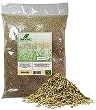 KOSHER Rosemary CUT & SIFTED 2 Pounds Bulk Bag-Heat Sealed to Maintain Freshness-Spice Seasoning