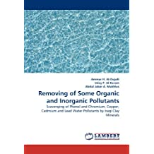 Removing of Some Organic and Inorganic Pollutants: Scavenging of Phenol and Chromium, Copper, Cadmium and Lead Water Pollutants by Iraqi Clay Minerals