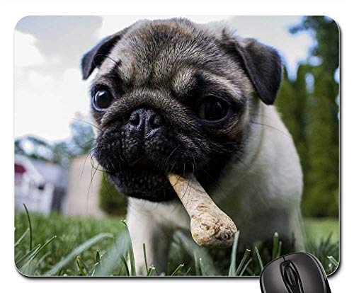 Mouse Pads - Puppy Bone Dog Pet Animal Food Chewing Eating]()