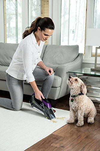 Buy bissell pet stain eraser deluxe cordless portable carpet cleaner