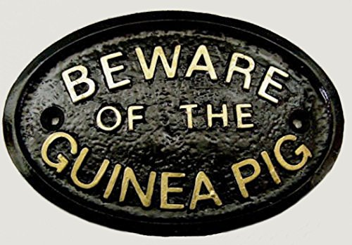 HomeWorks Beware of the Guinea Pig Garden Wall Plaque/Sign in (Black)