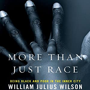 More Than Just Race Audiobook