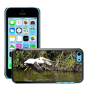 Hot Style Cell Phone PC Hard Case Cover // M00116952 Pelican Utah Landing Birds Nature // Apple iPhone 5C