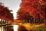 Autumn Scenery b - Art Print Poster,Wall Decor,Home Decor(36x24inches)