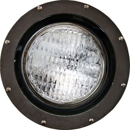 1 Light In-Ground Well Light Bulb Type: 150W PAR38, Volts: 120V by Dabmar Lighting