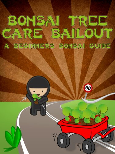 Bonsai Tree Care Bailout: A Beginner's Bonsai Guide (Bonsai Cultivation and Care Book 1)