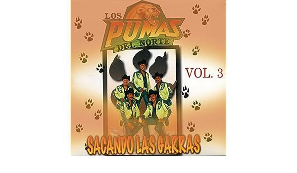 Cuando Te Conoci by Los Pumas Del Norte on Amazon Music ...