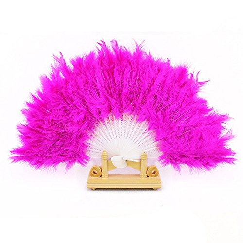 Jieyui Nice Feather Fan for Dance Wedding Costume Halloween Party Tea Party Variety Show 46cm Across (PP) -
