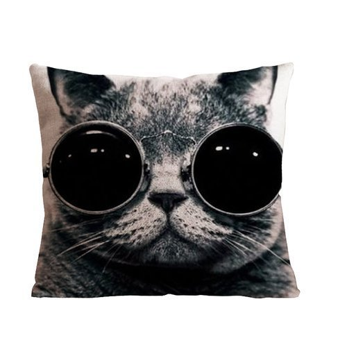 1Croninoutlet shop a cat with glass background Decorative Handmade Cotton Throw Pillow Covers /Pillow Shams,one side print,18×18 inch