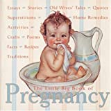 img - for The Little Big Book of Pregnancy (Little Big Books (Welcome)) book / textbook / text book