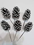 Dobar Extra Large Natural Pinecones with Floral Pick - 4 Inch Pinecones with 5' Brown Wired Pick - Set of 6 (White Tipped)