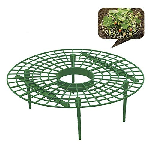 pinnacleT1 Strawberry Supports Your Garden - Easy to Use Str