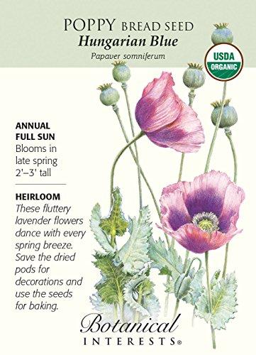 hungarian-blue-poppy-bread-seed-250-mg-organic