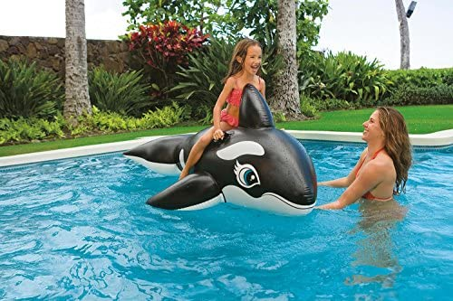 Intex 58561NP - Hinchable Ballena 193 x 119 cm: Amazon.es ...