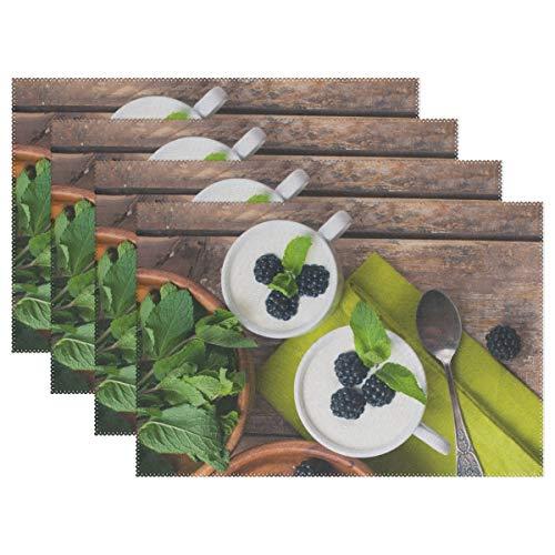RH Studio Plate Pad Dessert BlackBerry Mint Spoon Berry Heat-Resistant Table Placemats Set of 4 Stain Resistant Table Mats Washable Eat Mat Home Dinner Decorative