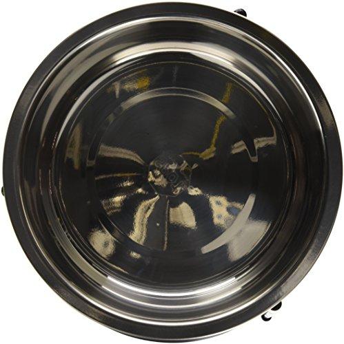 Buy elevated dog bowls