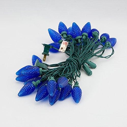 Fantado 25 Outdoor Blue LED C9 Strawberry String Lights, ...