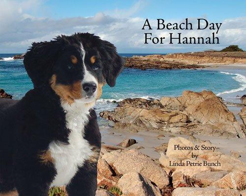 (A Beach Day for Hannah (Mountain Dog)