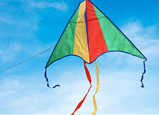 Outdoor Games Didak Kites Cody 10 50 x 10 x 30 Kite Kite