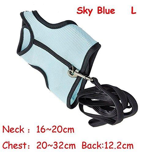Floweryua Ferrets Flexible Collar Pet Harness Leash Nylon Mesh Walking Chest Strap Rabbit Lead Wire (Rabbit Safety Collar)