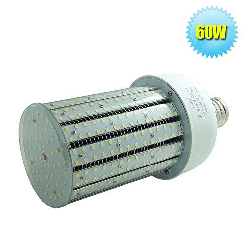 corn cob bulb - 7