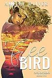 Bargain eBook - Free Bird