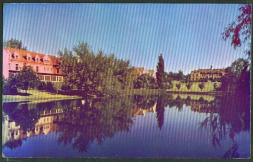 University of Nevada-Reno postcard 1950s from The Jumping Frog