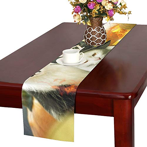 Two Cats Halloween Pumpkins Decorated Fire Table Runner, Kitchen Dining Table Runner 16 X 72 Inch for Dinner Parties, Events, -