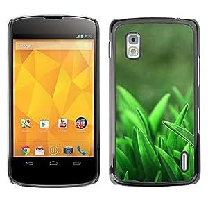 TopCaseStore / la caja del caucho duro de la cubierta de protección de la piel - Spring Growing Clean Forest - LG Google Nexus 4 E960