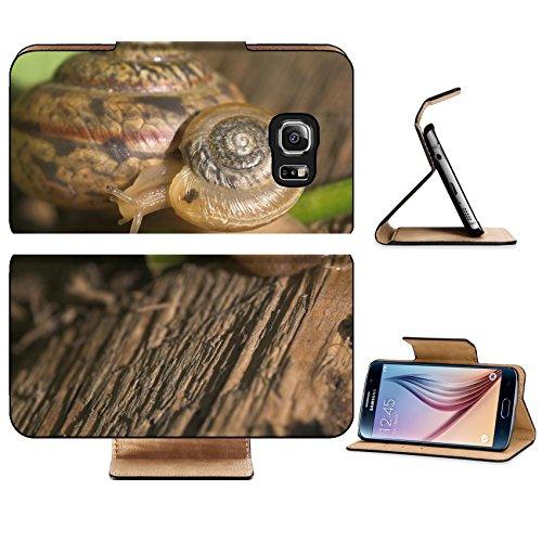 luxlady-premium-samsung-galaxy-s6-edge-flip-pu-leather-wallet-case-image-id-3512151-snail-s-family