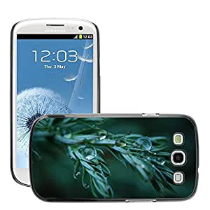 Super Stellar Slim PC Hard Case Cover Skin Armor Shell Protection // M00050754 aero wet macro plant // Samsung Galaxy S3 i9300