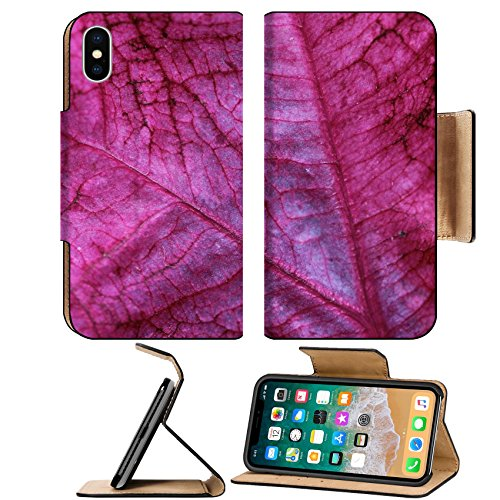 Coleus Annual (MSD Premium Apple iPhone X Flip Pu Leather Wallet Case Coleus Leaf Coleus is an annual colorful foliage plant that adds vivid colors to the garden IMAGE 30199049)