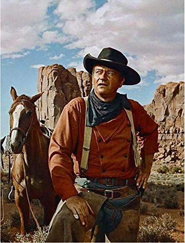 Image result for JOHN WAYNE WAS A COWBOY