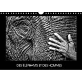 Des Elephants Et Des Hommes 2017: La Relation Entre Les Elephants Et Les Hommes En Asie Du Sud-Est