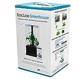 EcoQube Greenhouse - Self-Watering Hydroponic Garden Desktop Decor with Smart LED Grow Lights