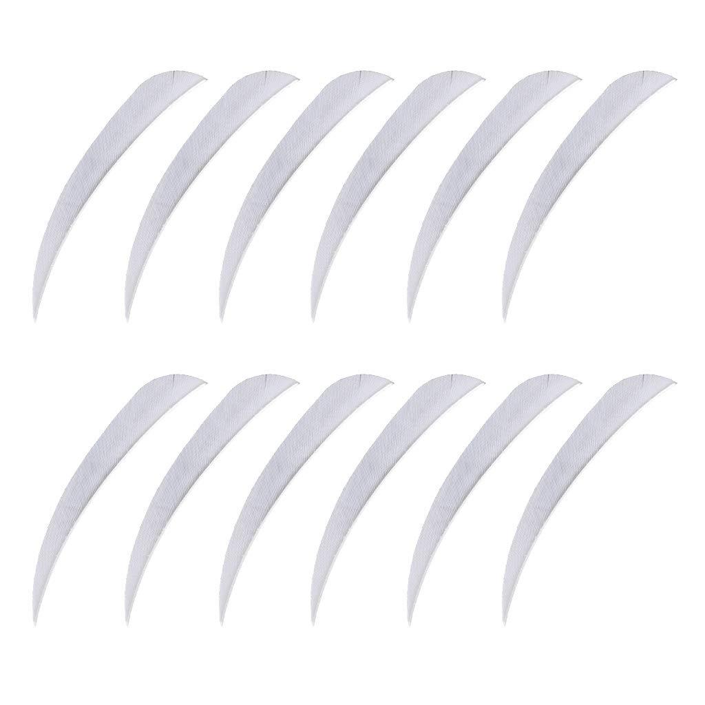 B Baosity 12 x Bogenschie/ßen Pfeilfedern 3 Zoll Bogensport Zubeh/ör