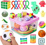 Sensory Fidget Toys Set, 27pcs Stress Relief and Anti-Anxiety Tools Bundle for Kids and Adults, Marble and Mes