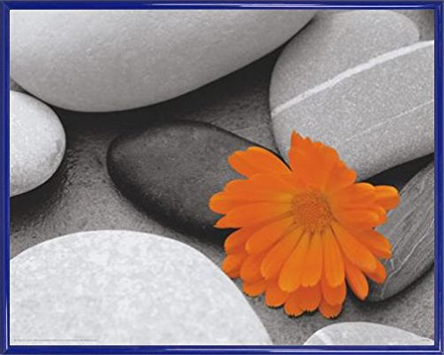 Nature Mini Poster and Frame Plastic - Pebbles, Marigold