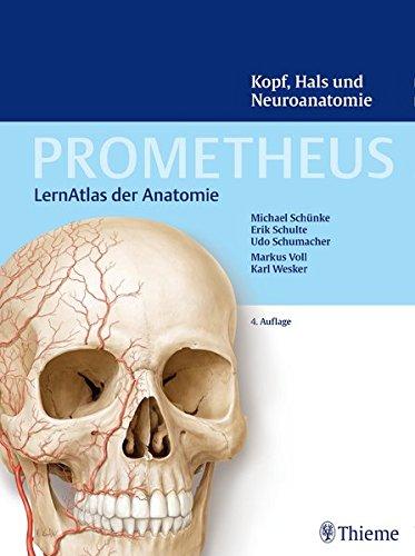 Kopf, Hals und Neuroanatomie (Prometheus: LernAtlas der Anatomie)