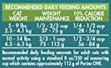 Purina-ONE-Indoor-Advantage-Dry-Cat-Food
