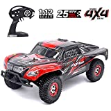 Tecesy RC Cars